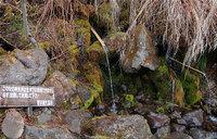 Nodrinkingwater