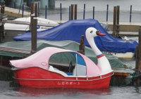 Swanboat_2