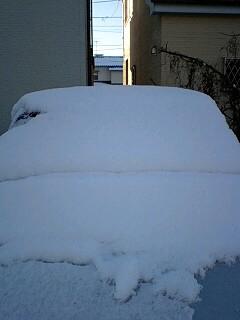 雪ネコカミ号